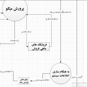 تجزیه و تحلیل سیستم پرورش میگو با ویزیو
