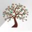 الگوریتم طبقه بندی درخت تصمیم BFTree